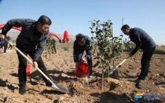 山西朔州:张韬出席全市纪念新中国植树节设立40周年暨2019年秋季义务植树活动