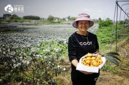 鹿溪荟:蔬果之乡的现代演绎
