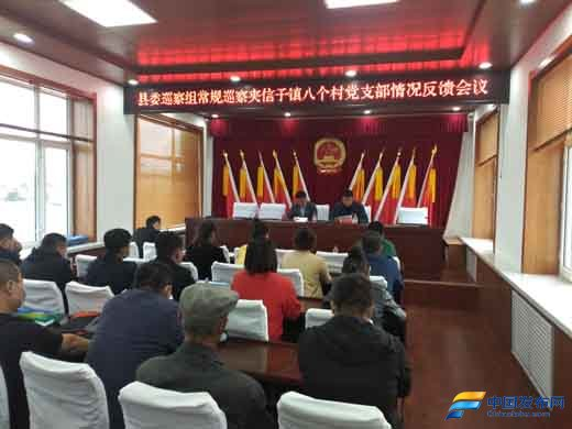 黑龙江省宝清县委第十轮第四巡察组巡察夹信子镇八个村党支部情况反馈会议召开