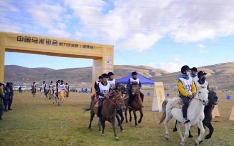 2020年第二场中国马术协会耐力达标赛(理塘站)成功举办