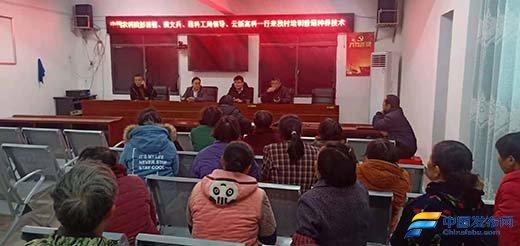 湖南省新邵县迎光乡:科技扶贫促发展香菇撑起致富梦