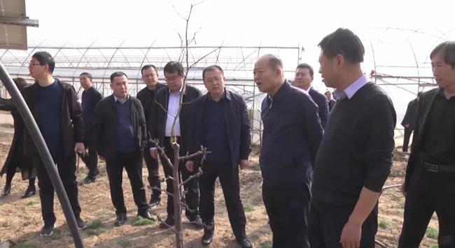 清涧县考察团赴山西临县考察调研红枣产业发展工作