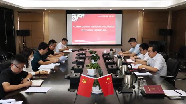 榆林文旅党支部召开党史学习教育专题组织生活会