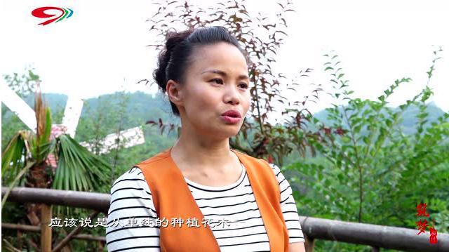 筑梦四川:陈敏拥抱土地 奉献于种植苗木业