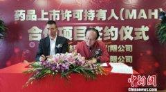 MAH制度改革助上海医药科研转化跨越发展