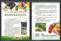 晋中市盛华农业专业合作社——香菇 草莓