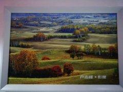 著名主任记者卢志峰摄影作品欣赏