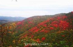 十堰郧阳:秋日登高看漫山红遍层林尽染