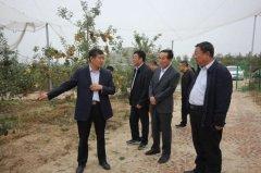 榆林市人大常委会人代选工委调研米脂县市人大代表履职情况